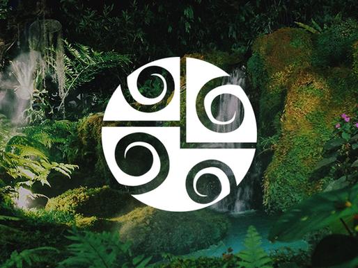 6 Espécies de Árvores Nativas do Brasil