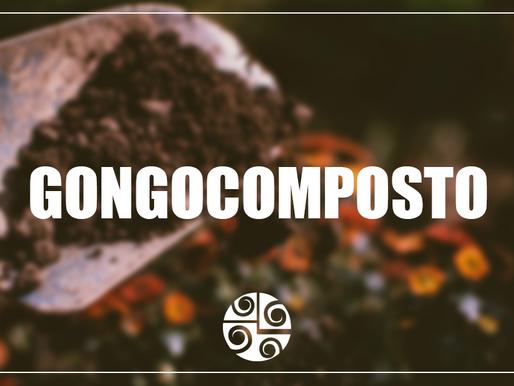 Entrevista com Fernando de Sousa - benefícios do gongocomposto