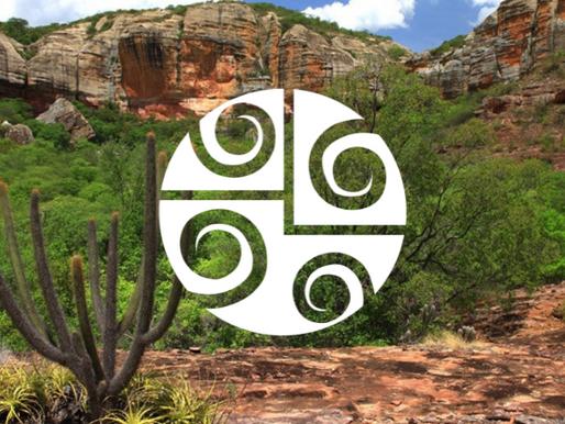 Bioma Caatinga: o bioma brasileiro