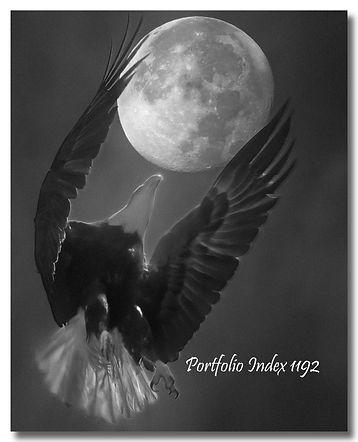 1192 - Apollo 11 (1192) Mighty Spirited_