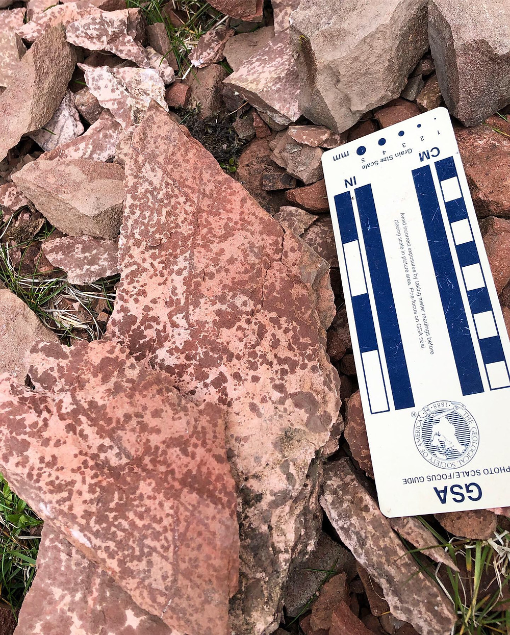A red rock with dark-red speckles and criss-crossed traces.