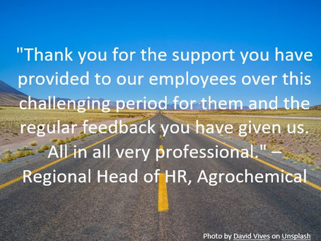 """Feedback from a """"Bend in the Road"""" client making use of our Outplacement services"""