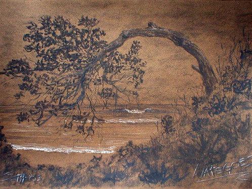 """""""Bent Tree at Wategoes"""""""