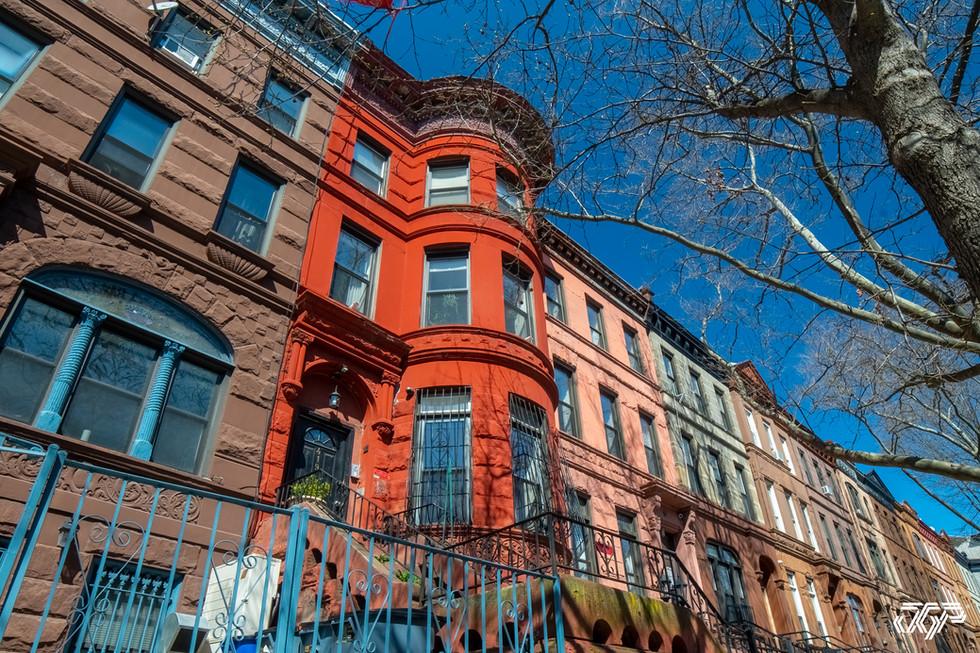 Brooklyn Edits-34.jpg
