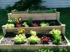 Universal School Garden