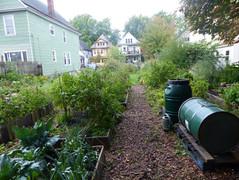 Greenwood Community Garden