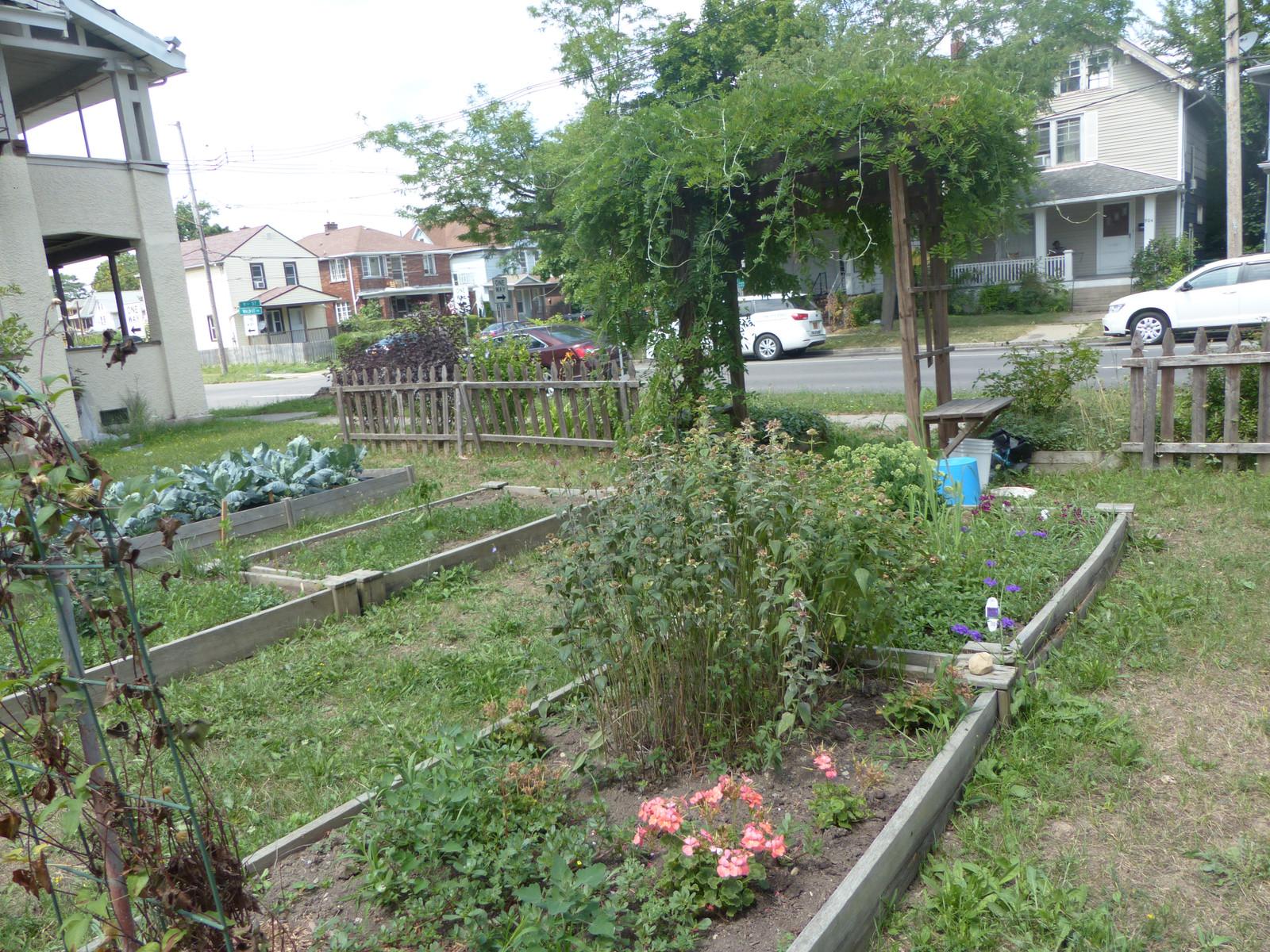 Walnut Avenue Kitchen Garden Iv Jpg