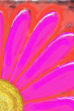 Edited Image 2013-1-27-14:34:16