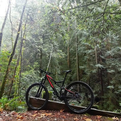 bike.jpg.jpg.jpg.jpg.jpgin the woods.jpg.jpg.jpg.jpg