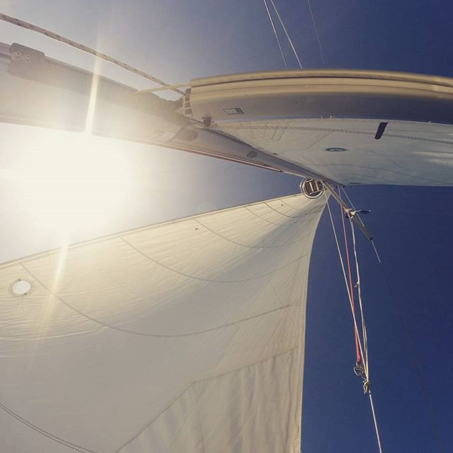 sunday sails