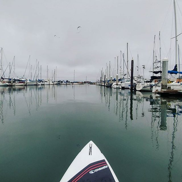 sup sunday harbor