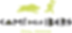 logo-cami-dels-ibers-trailrun-2.png