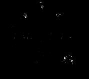 A Parts Iguals Logo