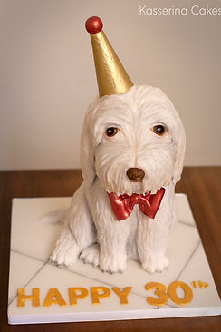 Sculpted cake of a favourite pet.  Maltese puppy. Cake structure of party dog. West sussex, East Sussex, Hampshire, Surrey.  Edible art. Cake craft, cake art, sugarcraft,