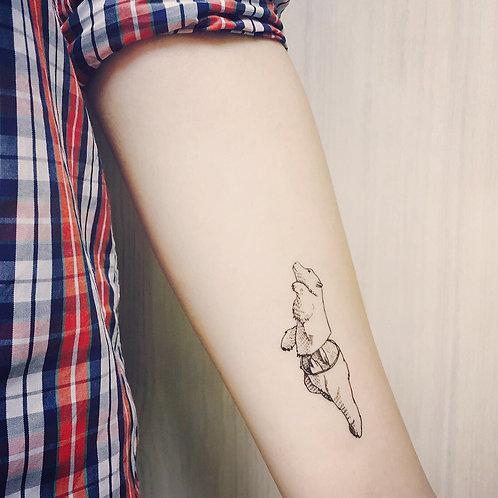 cottontatt polar bear illustration temporary tatto
