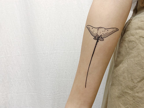 cottontatt stingray (top) illustration temporary tattoo sticker
