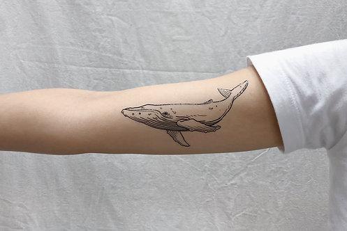 cottontatt blue whale illustration temporary tattoo sticker