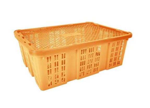 Caja Bambao