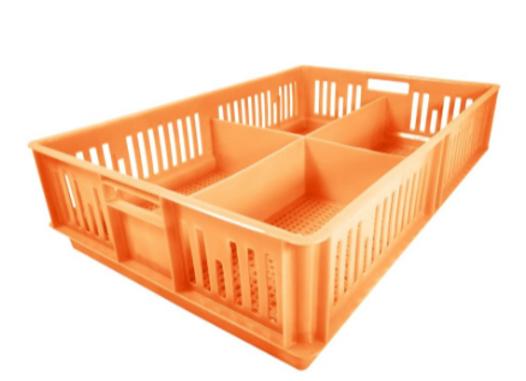 Caja para pollitos calada con division