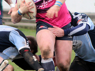 Hakes Too Strong for Bodmin