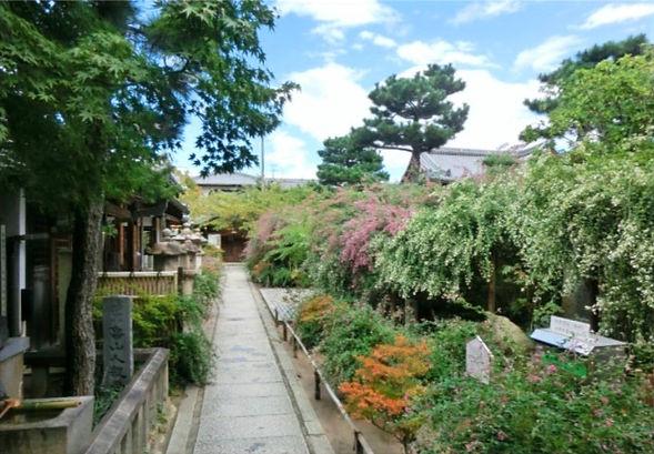 萩の寺について