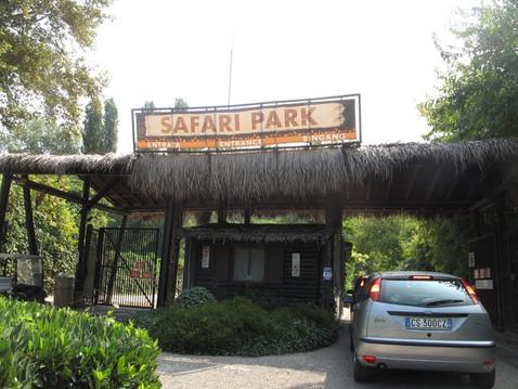 """Сафари-парк. В """"Африку"""" в машине."""