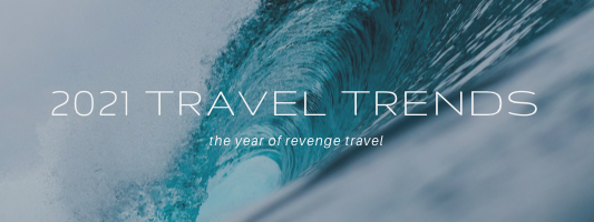 2021 Travel Trends by Hallie