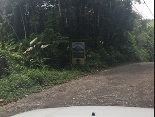 Review: The Springs Resort, Arenal, Costa Rica