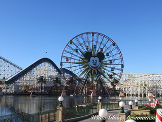 Save Up To 25% at Select Disneyland Resorts!