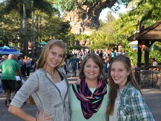 Walt Disney World: Best Views at Animal Kingdom