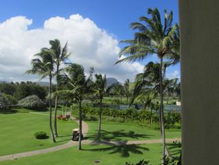 Hawaii: 8 Tips to a Perfect Stay at Hilton Waikoloa Village