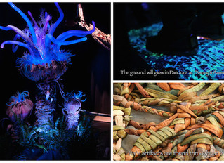 New Details Released for Pandora – The World of AVATAR at Disney's Animal Kingdom!