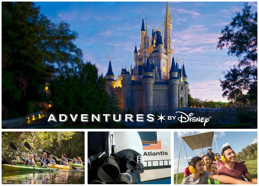Walt Disney World VIP Experience