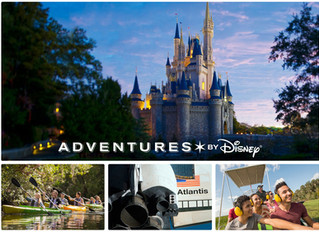 The Ultimate Walt Disney World VIP Experience