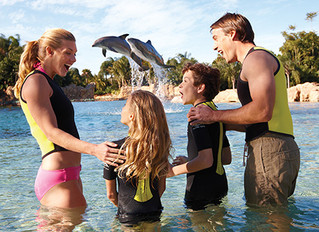 Discovery Cove Vacation Packages