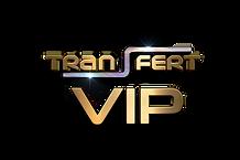 Logo Nîmes Transfert VIP