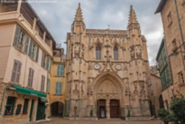 sightseeing toursBasilique Saint Pierre Avignon