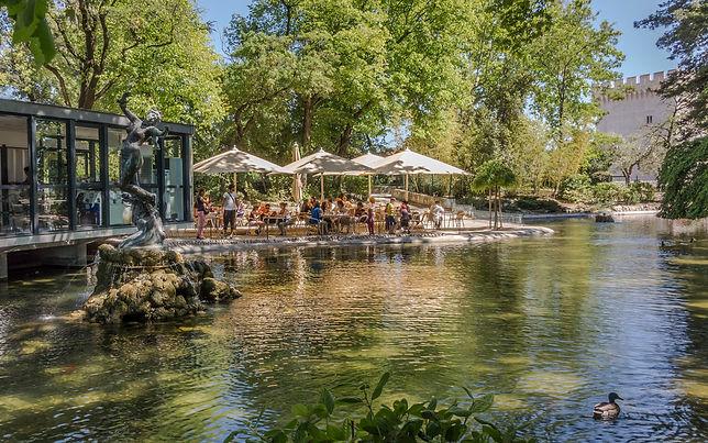 sightseeing tours Rocher des Doms Avignon Palais des Papes