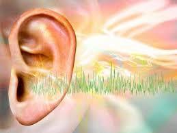 The Enigma of Tinnitus