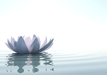 relaxing lotus flower.jpg