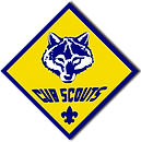 cub_scouts_fayetteville_nc_boys_and_girl