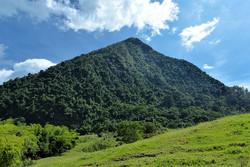 mountain-cerro-tusa-venice-antioquia-nat