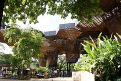 Jardin_Botanico-Orquideorama.Medellin.jp