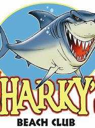 SharkNemologo.JPG