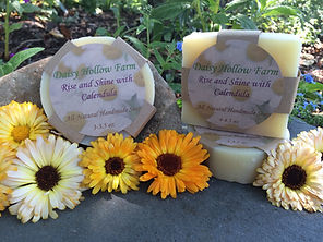 Rise and Shine with Calendula