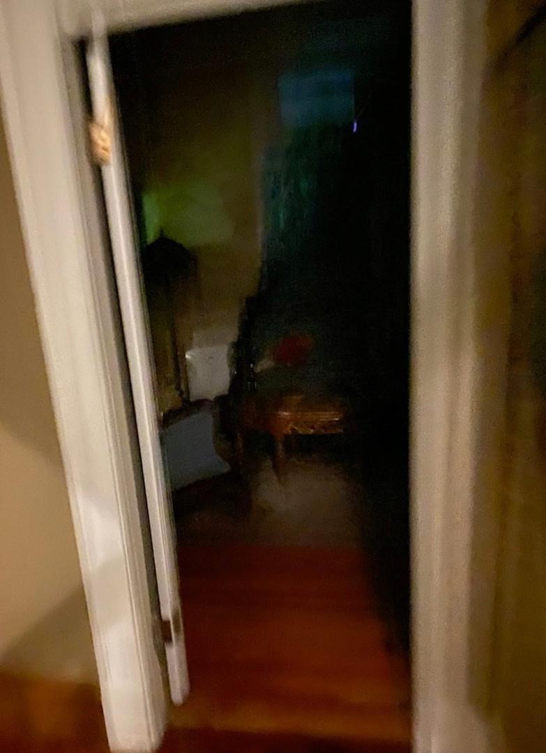 Shadow Figure photo taken at McInteer Villa