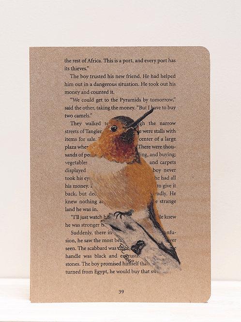 Notitieschrift kolibrie