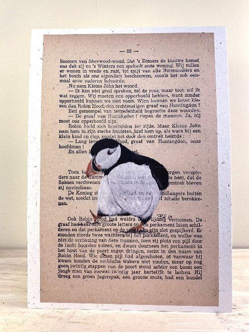Papegaaiduiker - fine art print - A5