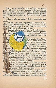 Pimpelmees portugees - kopie