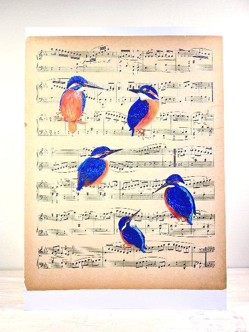Ijsvogels - fine art print (A4)
